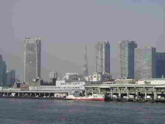 Самые большие и самые населенные города в мире